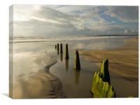Westward Ho! groynes leading to the shoreline, Canvas Print