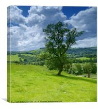 Beautiful Peak District , Canvas Print