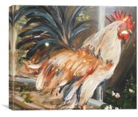 Colourful Rooster, Canvas Print