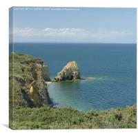 Point Du Hoc, Canvas Print
