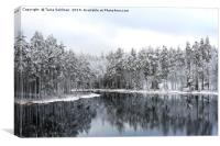 Magic Winter Lake , Canvas Print