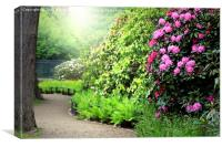 Sunlit Path in the Rhododendron Garden, Canvas Print