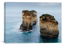 Rock formations in the sea, Canvas Print