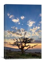 Sunset over a Dartmoor Scene, Canvas Print