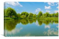 water lake reflection of green willow trees, Canvas Print