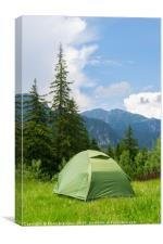 one green tent installed in the wild mountains, Canvas Print