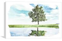 Lonely tree by the pond, Canvas Print