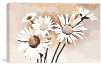 Blooming bouquet of daisies, Canvas Print