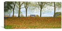 Solitary bench in an autumnal park , Canvas Print