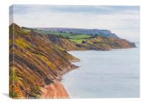 Osmington Coast to White Nothe, Canvas Print