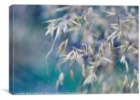 Grass Triptych Right, Canvas Print
