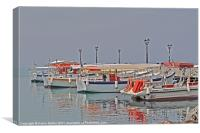 Water Taxis, Canvas Print