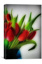 Red Tulips, Blue Vase, Canvas Print