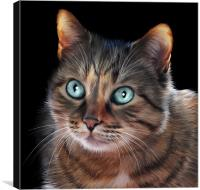 These Eyes..., Canvas Print