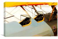 Stearman, Canvas Print