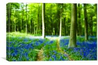 Bluebells at Westwoods Fractals, Canvas Print