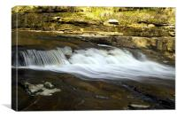 Flowing Swale, Canvas Print