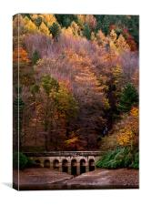 Autumn at Derwent Reservoir, Canvas Print