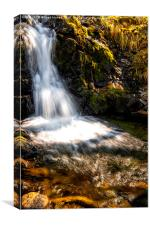 Aira Force Waterfall , Canvas Print