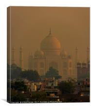 The Taj Mahal at Sunrise , Canvas Print