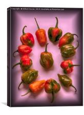 Hottest Chillies in The World, Canvas Print