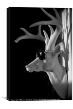 Cool Deer, Canvas Print