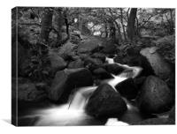 Padley Gorge in Black and White, Canvas Print