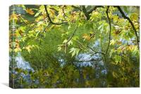 Reflected Leaves, Canvas Print