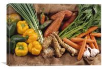 an assortment of vegetable, Canvas Print