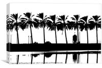 silhouette of palm trees Israel, Canvas Print