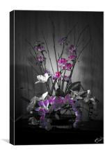Beautifully Arranged, Canvas Print