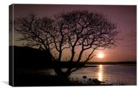Purple sunset with tree and lake, Canvas Print