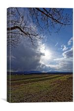 Spring plowing with angry clouds in the sky, Canvas Print