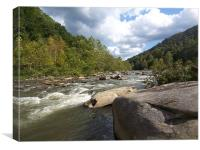 Gauley River, Canvas Print