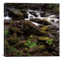 Fast flowing river in Scotland, Canvas Print