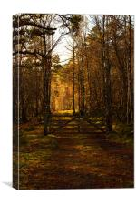 Gate Into the Sunlight, Canvas Print