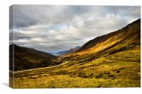Glen Docherty, Canvas Print