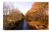 By the Banks of the River Nairn, Canvas Print
