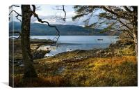 Sheltered Bay of Loch Sunart, Canvas Print