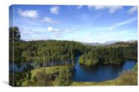 Tarn Hows, the Lake District, Canvas Print