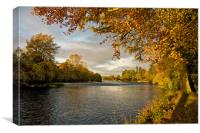 Autumn by the River Ness, Canvas Print
