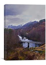 Glen Affric Scotland, Canvas Print