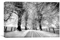 A Cold Winters Day, Canvas Print
