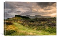 Murlough and the Mournes, Canvas Print