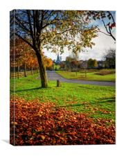Moira Demesne in Autumn, Canvas Print