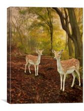 Two Little Deer's, Canvas Print