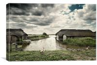 Geese at Hickling, Canvas Print