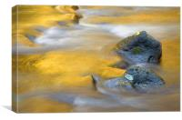Golden Refuge , Canvas Print