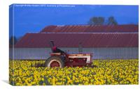 Working Fields of Color, Canvas Print