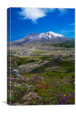 St. Helens Crater, Canvas Print